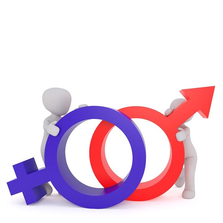 Día Mundial de la Educación No Sexista